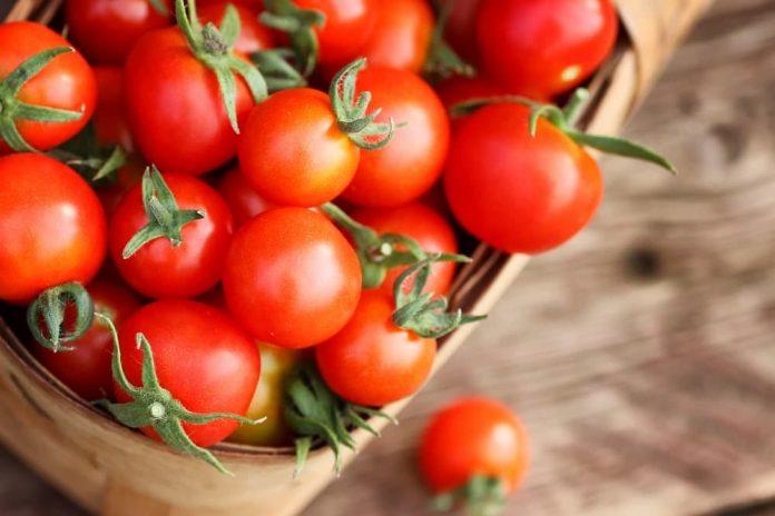El tomate es una excelente fuente de fibra, vitaminas , potasio y hierro