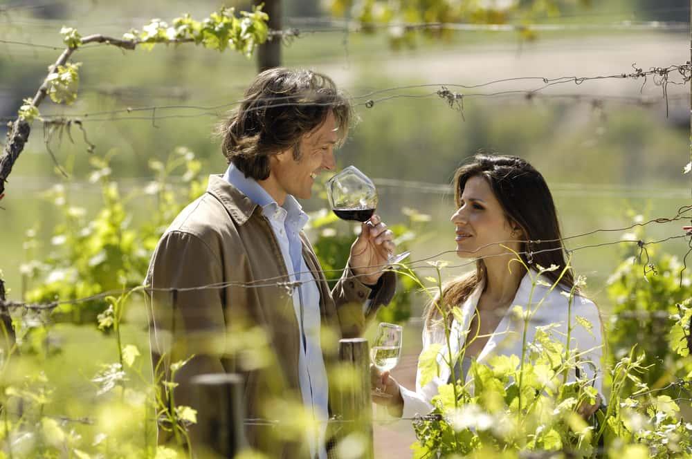 Estudios recientes muestran que las personas que toman vino tinto tienen menor incidencia de cáncer. Una copa al día beneficia tu salud.
