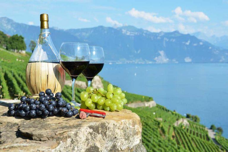 ¿El Vino Beneficia tu Salud?