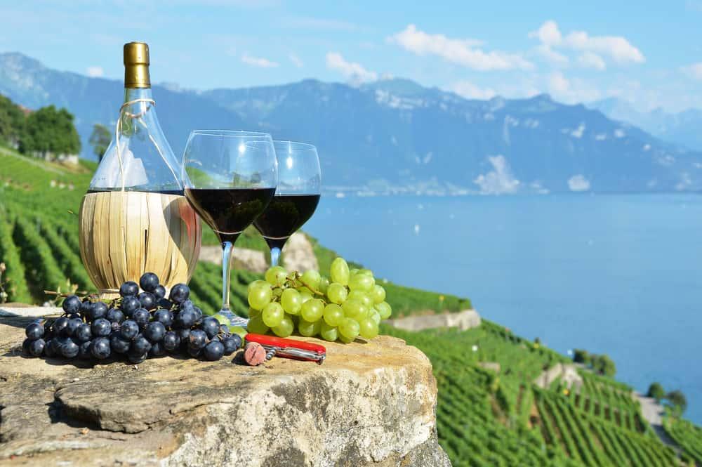 El vino tinto beneficia tu salud. Una copa al día ayuda a reducir enfermedades cardiovasculares.