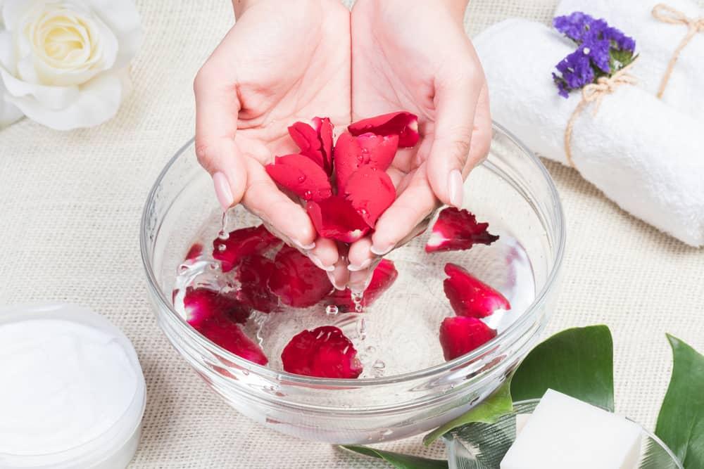 Los pétalos de rosas tienen maravillosas propiedades para la piel.