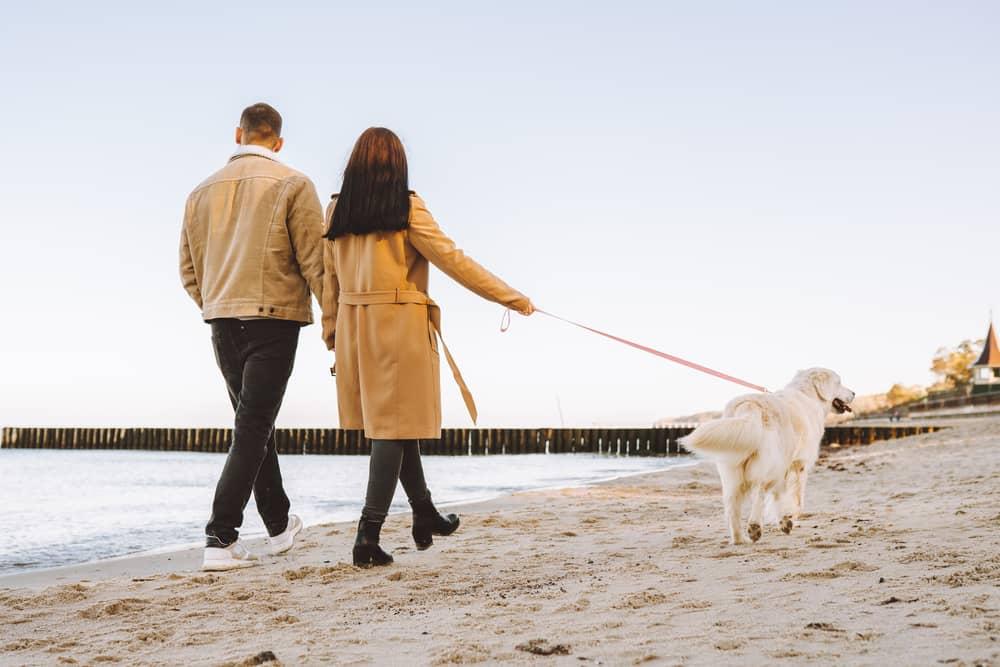 Todos podemos vivir mejor y más tiempo. Eso depende en gran parte de nuestro estilo de vida y de las relaciones que sembremos y cultivemos a lo largo de nuestra existencia.