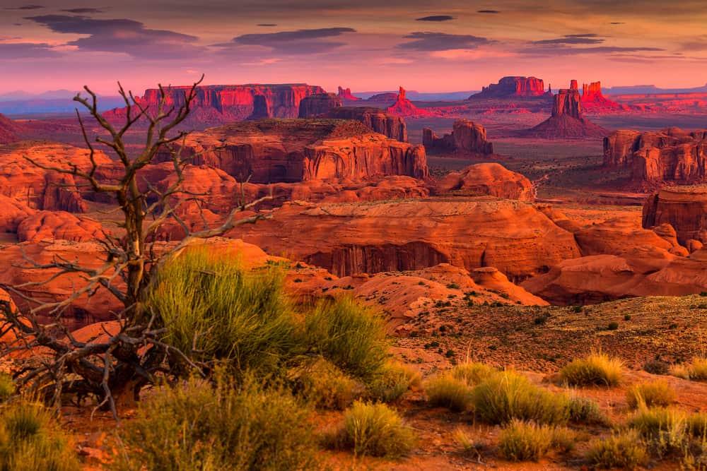El Gran Cañon del Colorado en Arizona es un viaje que debes hacer aunque sea una vez en la vida